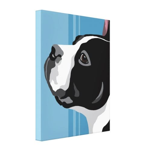 contemporary Boston Terrier canvas prints