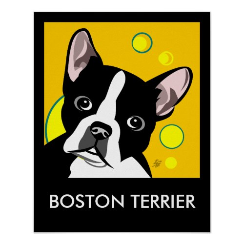 Contemporary Boston Terrier Posters