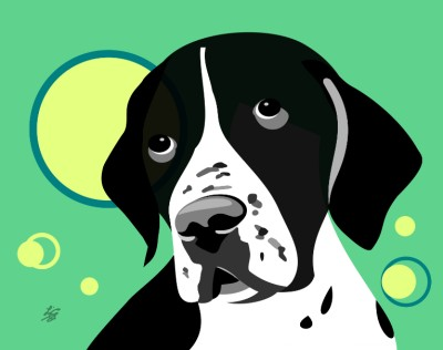 smooth coated pointer art