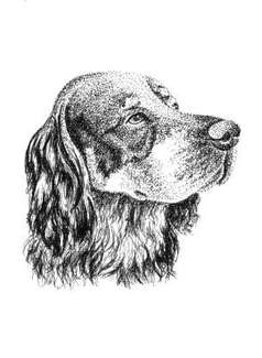 pen and ink pet portraits